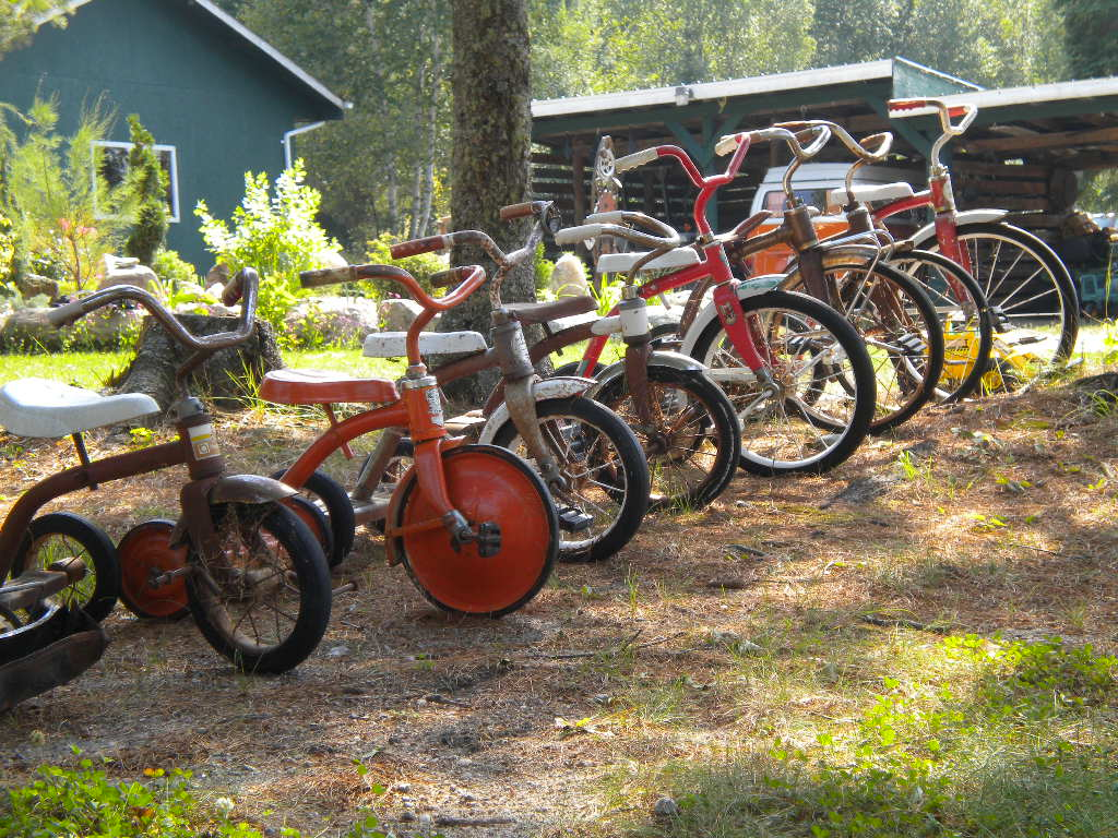 Our tricycle collection